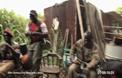 Войници дават автомат на шимпанзе и то започва да стреля