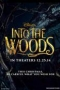 ���� ������,Into the Woods - ���� ������