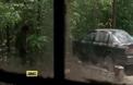 Тийзър 3, сезон 5