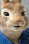 Peter Rabbit 2: The Runaway,Peter Rabbit 2: The Runaway - Peter Rabbit 2: The Runaway