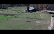 Rogue Hostage,Rogue Hostage - Първи трейлър на филма с Тайриз Гибсън
