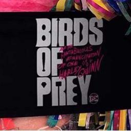 "Приключиха снимките на ""Birds of Prey"""