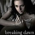 The Twilight Saga: Breaking Dawn в две части